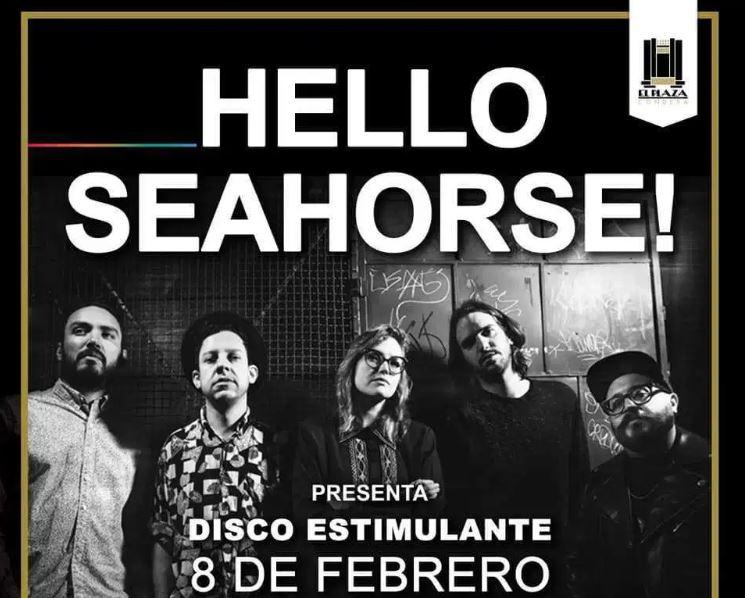 HELLO SEAHORSE! regresa con un Disco Estimulante en MUSICA.  Chicas Rockeras!